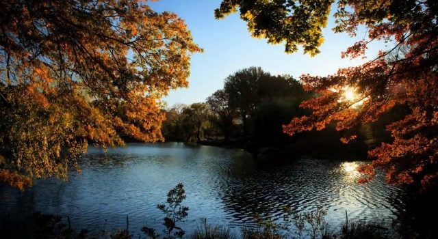 Fall-in-Central-Park6-640x360