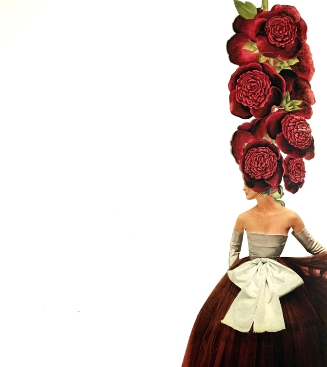 © Olivia Descampe | Botanical Catwalk | Collage | nuncalosabre